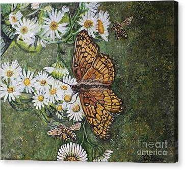 Dance With The Daisies Canvas Print by Kimberlee Baxter