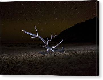 Dancing Drifter Canvas Print by Brent L Ander
