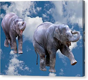 Dancing Elephants Canvas Print by Jean Noren