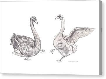 Dancing Geese Canvas Print by John Keaton