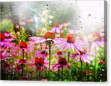 Dancing In The Rain Canvas Print by Mary Timman