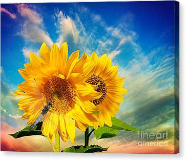 Dancing In The Sun Canvas Print by To-Tam Gerwe