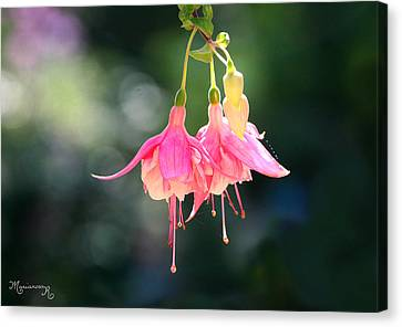 Canvas Print featuring the photograph Dancing In The Wind by Mariarosa Rockefeller