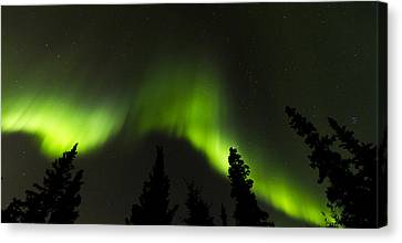 Dancing Lights Canvas Print by Kyle Lavey