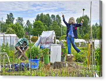 Canvas Print featuring the photograph Dancing Scarecrow In The Garden by Maria Janicki