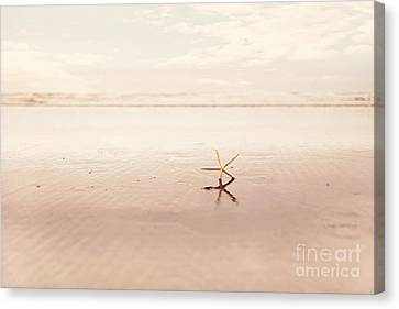 Dancing Starfish Beach Photograph Canvas Print by Sylvia Cook