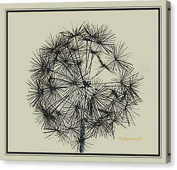 Canvas Print featuring the photograph Dandelion 6 by Kathy Barney