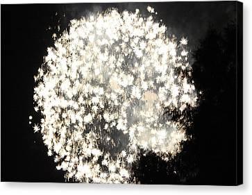 Dandelion Ablaze Canvas Print