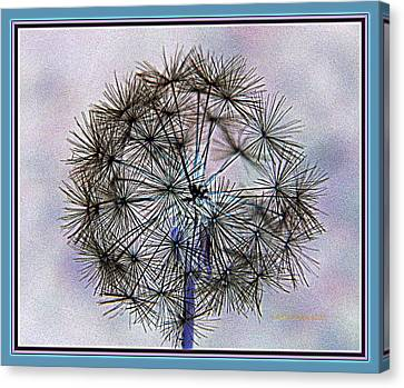 Canvas Print featuring the photograph Dandelion Blue And Purple by Kathy Barney