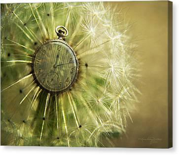 Dandelion Clock II Canvas Print by Karen Casey-Smith