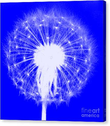 Canvas Print featuring the digital art Dandylion Blue by Clayton Bruster