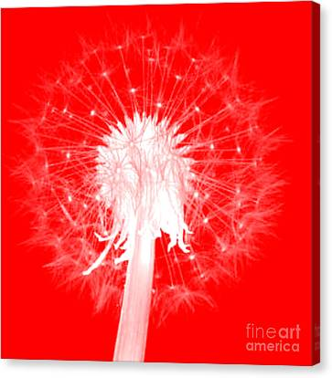 Canvas Print featuring the digital art Dandylion Red by Clayton Bruster