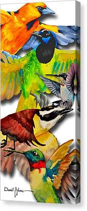 Da131 Multi-birds By Daniel Adams Canvas Print