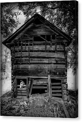 Mountain Cabin Canvas Print - Daniel Boone Cabin by Karen Wiles
