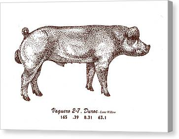 Canvas Print featuring the drawing Danish Duroc by Larry Campbell