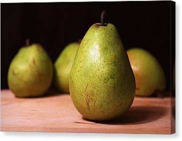 D'anjou Pears Canvas Print