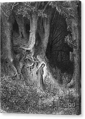 Dante's Inferno, The Gloomy Wood Canvas Print by Middle Temple Library
