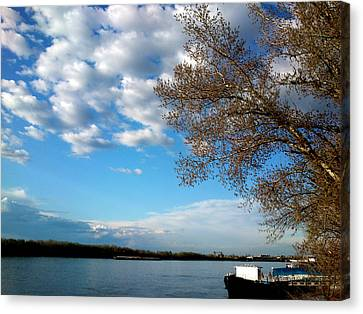 Canvas Print featuring the photograph Danube by Lucy D