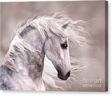 Dappled Grey Horse Head Profile Canvas Print by Elle Arden Walby