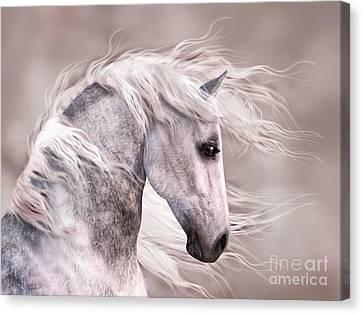 Dappled Grey Horse Head Profile Canvas Print