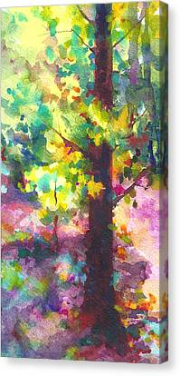 Dappled - Light Through Tree Canopy Canvas Print by Talya Johnson