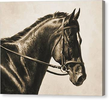 Dark Bay Dressage Horse Aged Photo Fx Canvas Print