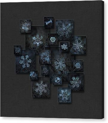 Snowflake Collage - Dark Crystals 2012-2014 Canvas Print