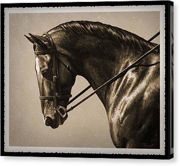 Bay Horse Canvas Print - Dark Dressage Horse Old Photo Fx by Crista Forest