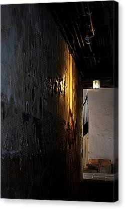 Secret Passage Canvas Print by Nadalyn Larsen