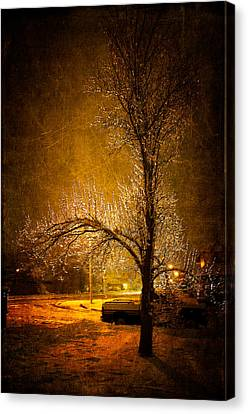 Canvas Print - Dark Icy Night by Sofia Walker