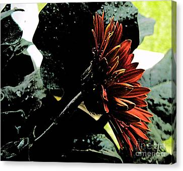 Dark Love Canvas Print by Lorraine Heath