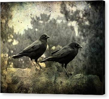 Birds In Graveyard Canvas Print - Dark Nature by Gothicrow Images