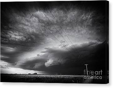 Dark Prairie Canvas Print by Dan Jurak