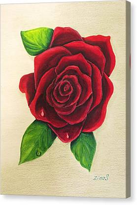 Floral Canvas Print - Dark Red Rose by Zina Stromberg