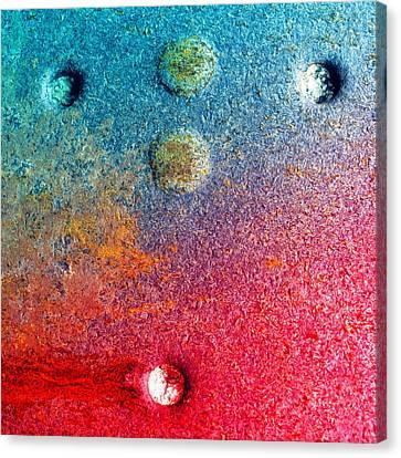 Dark Rose Canvas Print by Tom Druin