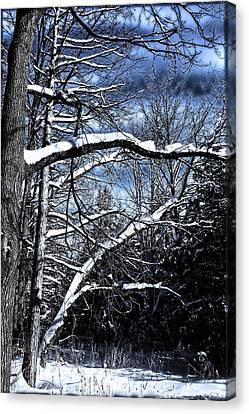 Canvas Print featuring the photograph Dark Sky by Michaela Preston