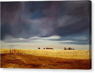 Dark Sky Canvas Print by William Renzulli