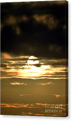Dark Skys Canvas Print by Sheldon Blackwell