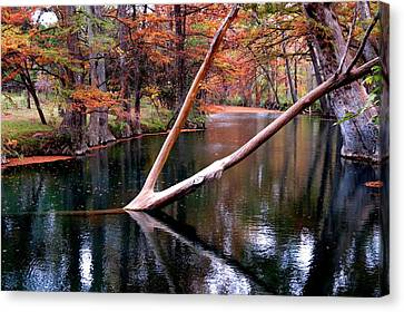 Canvas Print featuring the photograph Dark Waters by David  Norman