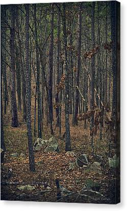 Canvas Print featuring the photograph Dark Woods by Yvonne Emerson AKA RavenSoul
