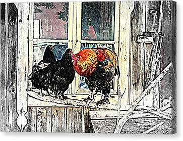 Darling, Stay At Home, It's Cold Outside Canvas Print by Hilde Widerberg