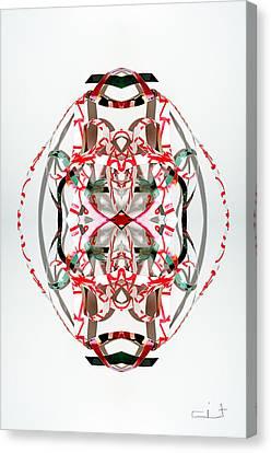 Darma Canvas Print by Citpelo Xccx