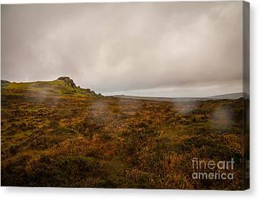 Dartmoor Rain Canvas Print by Jan Bickerton