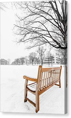 Dartmouth Winter Wonderland Canvas Print