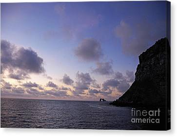 Darwin's Arch And Darwin Island Canvas Print by Sami Sarkis