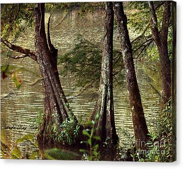 Davids River Canvas Print