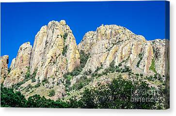 Davis Mountains Of S W Texas Canvas Print