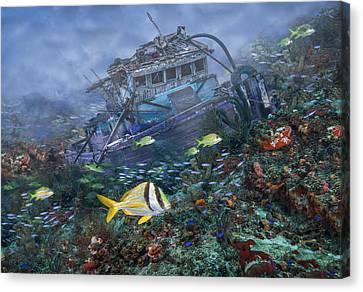 Sea Anenome Canvas Print - Davy Jones' Locker by Debra and Dave Vanderlaan