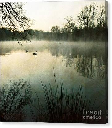 Dawn At Biltmore Lagoon Canvas Print by Doug Sturgess