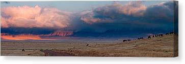 Dawn In Ngorongoro Crater Canvas Print by Adam Romanowicz